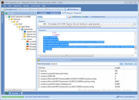 Netsparker - Community Edition